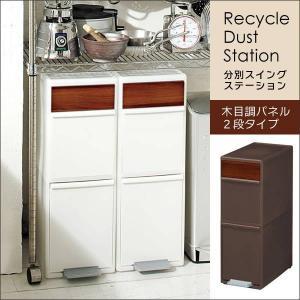 ゴミ箱 おしゃれ キッチン スリム 分別スイングステーション 木目調パネル 2段 adhocplus
