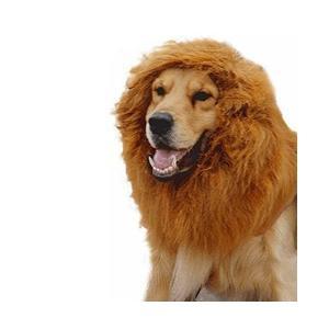 【 犬用 ライオン 変身 グッズ 】 変身 フード ネックウォーマー|adnext