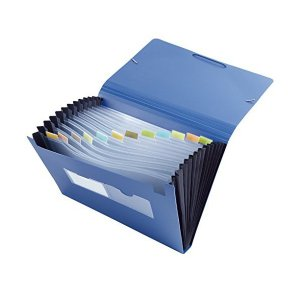 クリアファイルホルダー A4 ドキュメントファイル 12ポケット ケースファイル アコーディオン式 伸縮自在 大容量 オフィス用品|adnext
