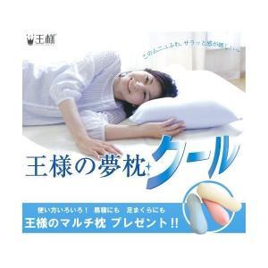 王様の夢枕 クール (専用カバー付) W52×D34×H12cm 【王様のマルチ枕をプレゼント】|adnext
