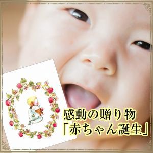 赤ちゃん誕生 世界に1冊だけの感動 記念日 絵本 (子供用ひらがな) メール便可 オリジナル 出産祝い 誕生記念|adoshop
