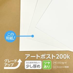 名刺 用紙 変更オプション 通常より少し厚め  OK特アートポスト200k|advan-printing