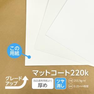 名刺 用紙 変更オプション 通常よりもっと厚め  ロストンカラーホワイト220k|advan-printing