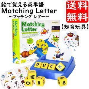 知育玩具 幼児英語学習 絵で覚える英単語 ラーニング 学習玩具 記憶 能力開発 積み木やブロック感覚で手先を使いながら直観的学習法 英会話上達の近道|advanceworks2008