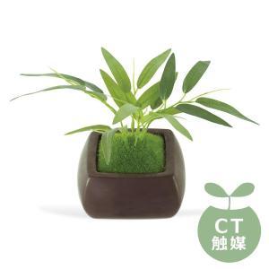 (送料無料)Wa Bonsai(和盆栽) DEODORANT ARTIFICIAL GREEN 消臭アーティフィシャルグリーン タケ KH-61066|advanceworks2008