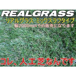 人工芝2m幅 本物ソックリな芝高30mm RealGrass リアルグラス 1m×2mの価格です 得トク2WEEKS0410|advanceworks2008