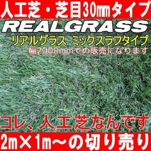 人工芝2m幅 本物ソックリな芝高30mm RealGrass リアルグラス 得トク2WEEKS0410|advanceworks2008