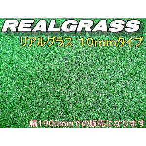 人工芝2m幅 本物ソックリな芝高10mm RealGrass リアルグラス 1m×2mの価格で す 得トク2WEEKS0410|advanceworks2008