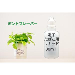 電子タバコ用 汎用 液体リキッド ミント 30ml eGO-T ベイプ VAPE 等に 水蒸気 水煙 煙草 たばこ 禁煙|advanceworks2008