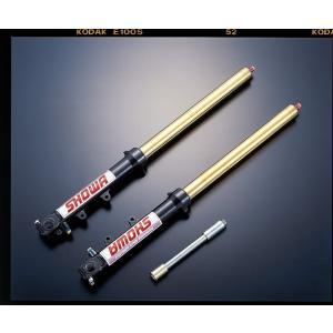 ADVANTAGE SHOWA Type-0T 正立41φガンメタ(チタンナイトライトTin) 汎用品 511-S41800-Gti|advantage