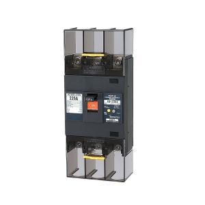 テンパール工業 漏電遮断器 GB-223EA 3P3E 200A  30mA 225AF ELB 223EA2030|adwecs