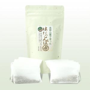 はたごんぼ茶 1パック(10袋)|aemon|02