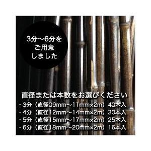 黒竹(2m/各種サイズ) 5,000円分セット|aemon