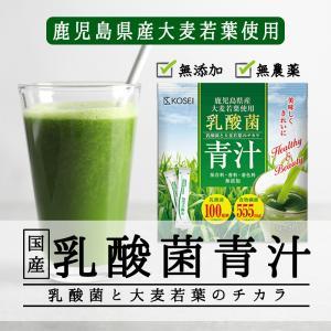 ポイント消化 送料無料 ( 乳酸菌 国産青汁 ...の詳細画像1