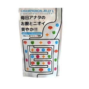 日東製薬 シャンピニオンゼリー ニットー エル 30粒入