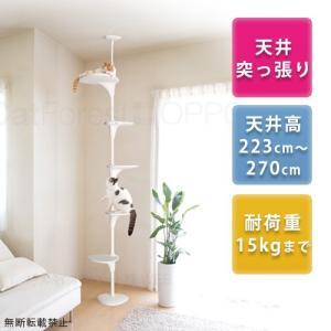 猫ちゃんの成長に合わせてステップの向きや高さを変えることができ、置き場所を選ばないタワーです。