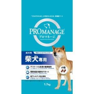柴犬の犬種特徴にぴったりなケアを