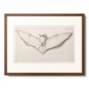 ハンス・ホルバイン(子) Hans Holbein der Jungere 「Bat with sp...