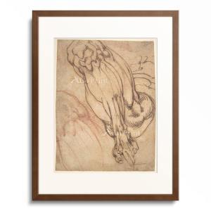 Michelangelo Buonarroti 1475-1564.  Anatomical Stu...