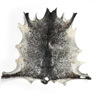 ≪Spring SALE!3/26まで≫◎ジャンベ用ヘッド・ブルキナファソ産山羊皮|afromode