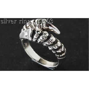 SATAN CLAW【サタン クロー】悪魔の爪シルバー925リング(指輪)|again