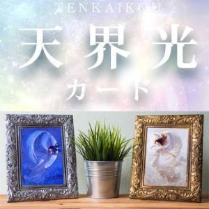 天界光カード 有名アーティスト 長野 剛 あなたを幸福に導いてくれると言われています again