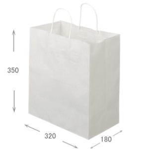 紙丸紐手提げ袋 マチ広中(高さ350×幅320×奥行180) 内祝い 出産内祝い お返し|agc2