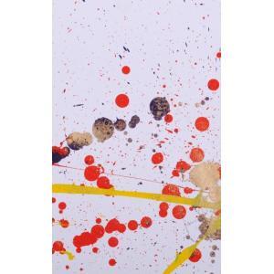 ●画家名:今井アレクサンドル ●作品名:SAA-14 ●絵のサイズ:W17×H28cm ●額装サイズ...