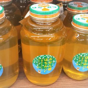 みかん蜂蜜2.4kg【菊池養蜂】|agoramarche