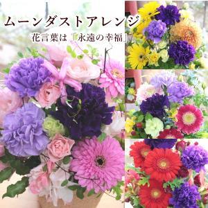 敬老の日 フラワーアレンジ 紫カーネーション プレゼント  誕生日 お祝い お礼  送料無料 クール便「お花おまかせムーンダストアレンジ」 agreable1999