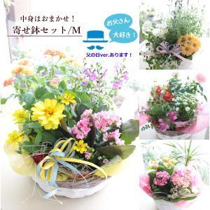 グリーンの寄せ鉢セット。スタッフに種類をおまかせいただくことで、新鮮なお花やグリーンをお届けいたしま...