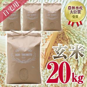 自宅用玄米(5kg×4) コシヒカリ 農林水産大臣賞受賞  / 玄米 お米 ご飯 20kg|agri-takimoto