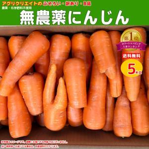 【送料無料】無農薬ジュース用洗い人参5kg agricreate