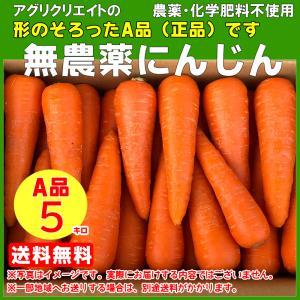 【送料無料】無農薬洗い人参5kg (A品) 無農薬・無化学肥料栽培 agricreate