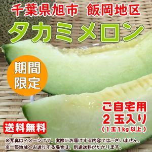 【送料無料】千葉県産タカミメロン2個箱 ※ご自宅用 agricreate