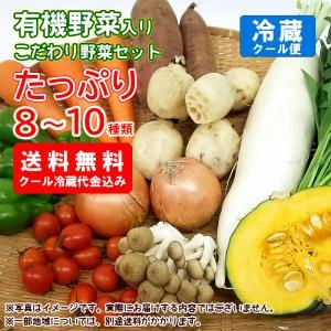 【送料無料】お試し有機野菜入りこだわり野菜セット