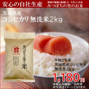茨城県産【無洗米】コシヒカリ白米2kg みつばちの里のお米|agricreate