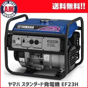 業務用としても使える余裕の発電容量を誇る高出力タイプ。  乾燥重量:41kg  [50Hz] 定格出...