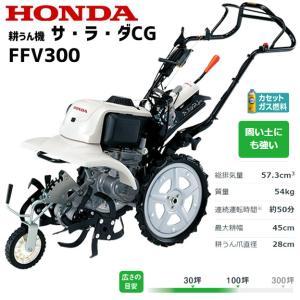名称:サ・ラ・ダCG FFV300 型式名:FBDJ タイプ (区分):LT2 全長(mm):1,4...