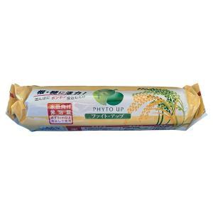 水田用投込発泡剤 ファイト・アップ 米用 500gの商品画像|ナビ