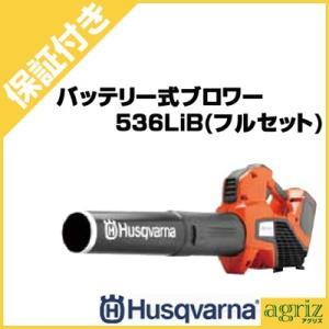 (プレミア保証付) ハスクバーナ バッテリー式ブロワー 536LiB(フルセット)|agriz