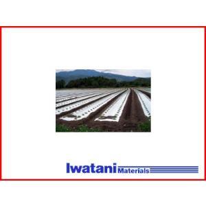 岩谷 イワタニ 菜園用 防虫シルバーマルチ 0.02mm×95cm×50m 農業資材 園芸用品 家庭菜園|agriz