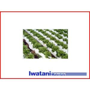 岩谷 イワタニ 菜園用 リバースマルチ白黒 0.02mm×95cm×50m 農業資材 園芸用品 家庭菜園|agriz