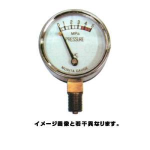 永田 圧力計ウラネジ 50mm×5.0MPa(PT1/4)(噴霧器 噴霧機 動噴 防除 噴口 ノズル) agriz