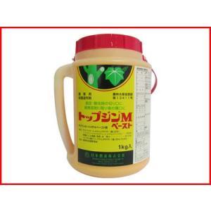(農薬)トップジンMペースト 1kg(園芸用 殺菌剤)