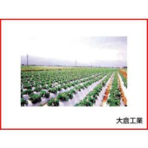 [個人宅配送不可 会社や農園へのお届け限定] オークラ(大倉) 白黒マルチ こかげマルチ 0.025mm×210cm×200m 2本入 農業資材|agriz