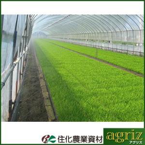 住化農業資材 ミストエース S54 100m巻 (サイド灌水) 潅水チューブ 灌水チューブ|agriz