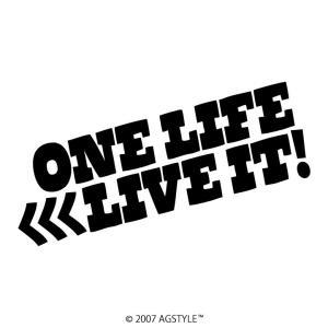 ONE LIFE LIVE IT カッティングステッカー ステッカー メッセージ サーフ スノボ 波 雪 車 JDM USDM US スケボー オリジナル デザイン|agstyle