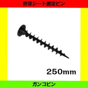 ガンコピン 250mm 50本 プラスチック製固定ピン 防草パッチ付き|aguila