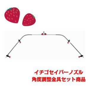 【ヤマホ工業】イチゴセイバーノズル (角度調整金具セット商品)|aguila